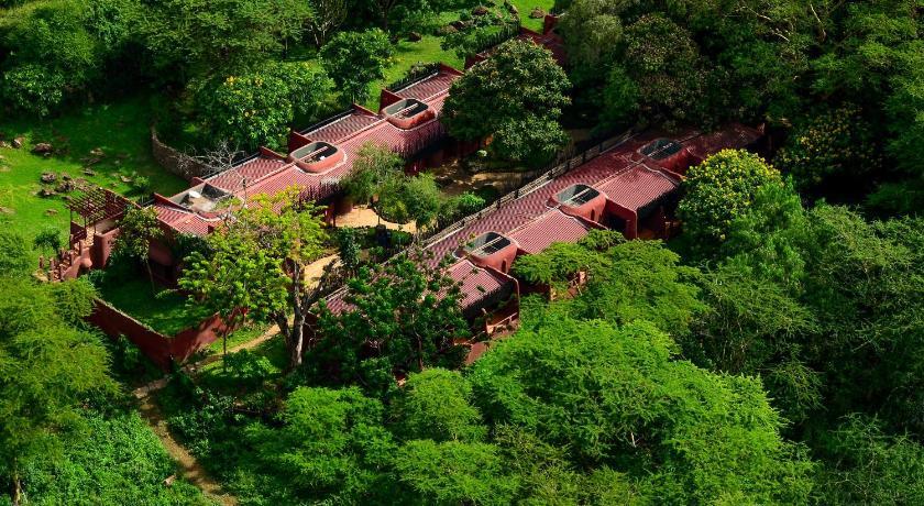 Amboseli Serena Lodge2